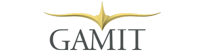 Gamit | Specialists in Aviation Asset Management